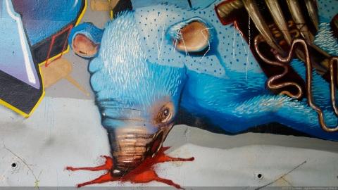Rat bleu