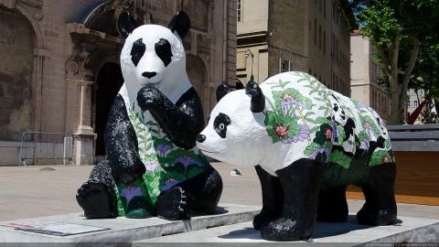 Pandas fleuris