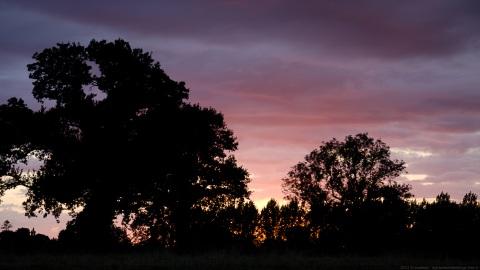 Cavigny Sunset
